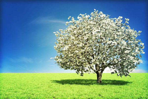 Yes, money does grow on trees | Sovereign Man